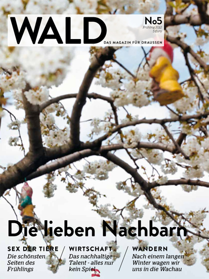 Cover_Wald_v5